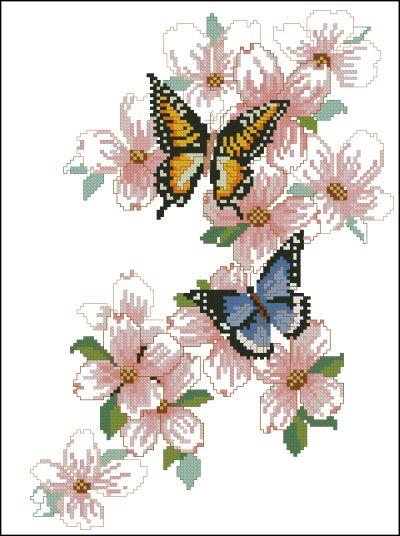 Bucilla