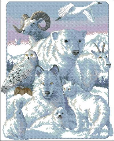 Северные животные Dimensions