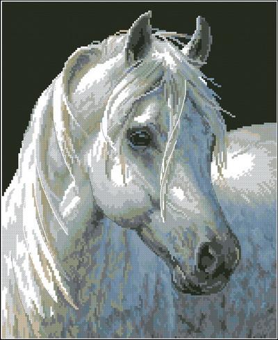 Голова лошади Dimensions