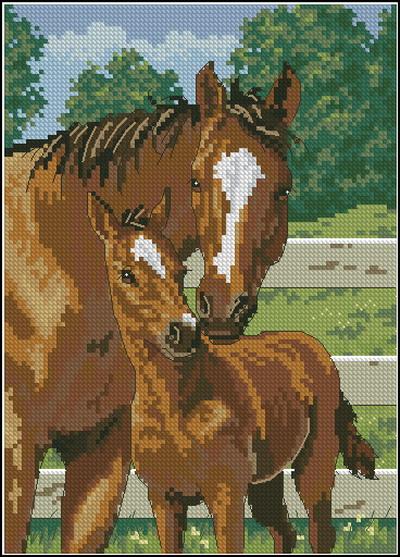 Лошадь и жеребенок Dimensions