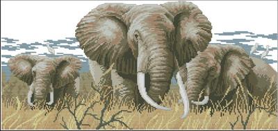 Слоны Dimensions