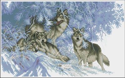 Стая волков Dimensions