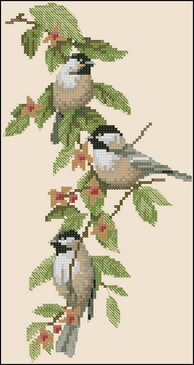 Птицы (воробьи) Dimensions
