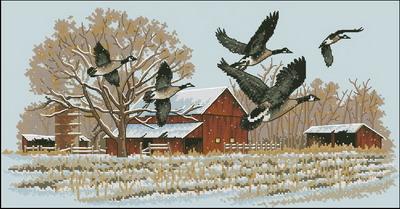 Птицы (дикие гуси) Dimensions