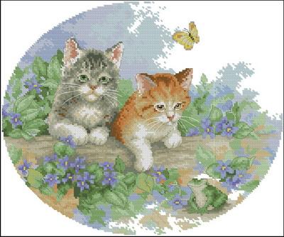 Два играющих котенка Dimensions