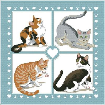 4 кошки Dimensions