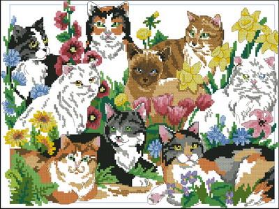 Кошки в саду Dimensions