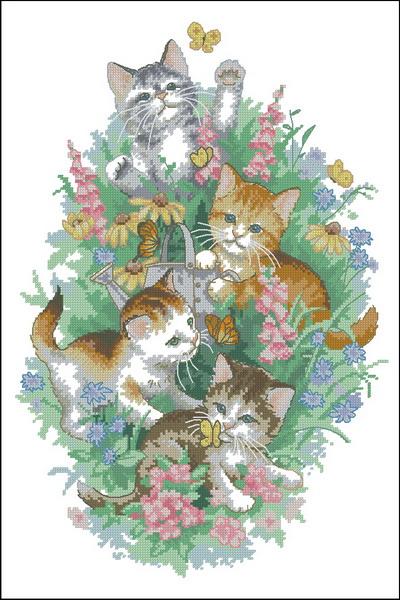 4 играющих котенка Dimensions
