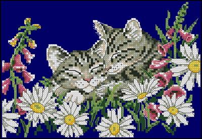 Два котенка в цветах Dimensions
