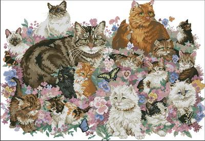 Кошки в цветах Dimensions