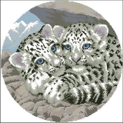 Snow leopards cubs