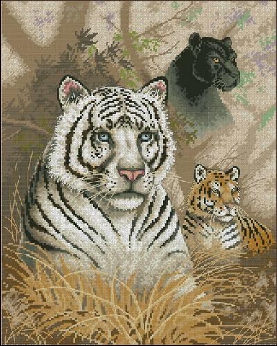 Белый тигр Dimensions