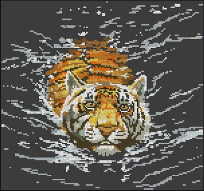 Леопард Dimensions