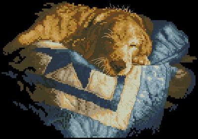 Спящая собака  Dimensions