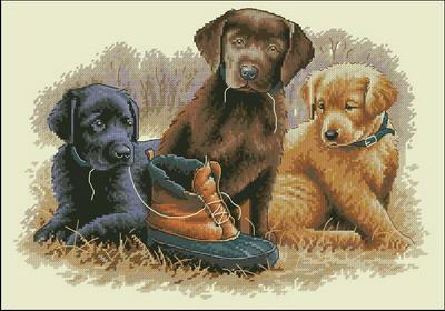 Три щенка Dimensions
