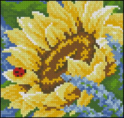 Цветы подсолнухи Dimensions
