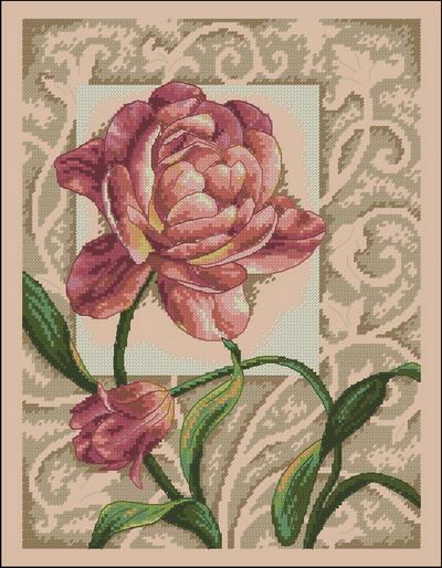 Цветы тюльпаны Dimensions