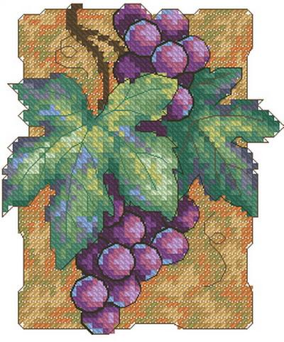 Виноград Dimensions