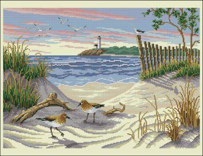 Пейзаж чайки на пляже Dimensions