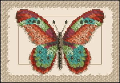 Бабочка  Dimensions