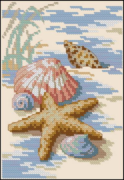 Ракушки и морские звезды Dimensions