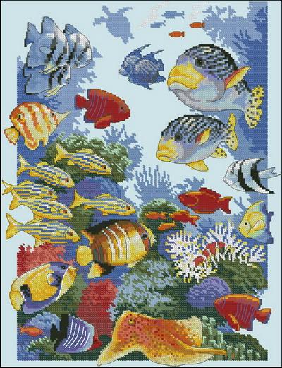 Морской мир-жители океана