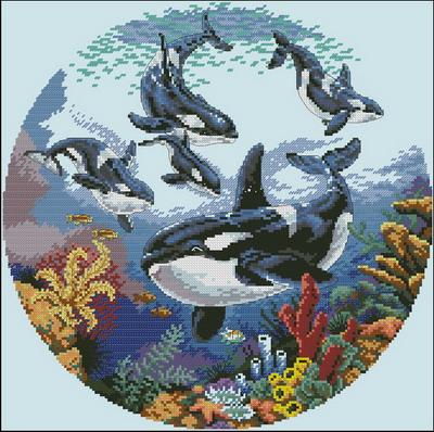 Дельфины Dimensions