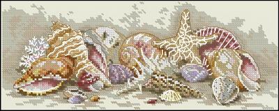 Морские ракушки и звезды Dimensions