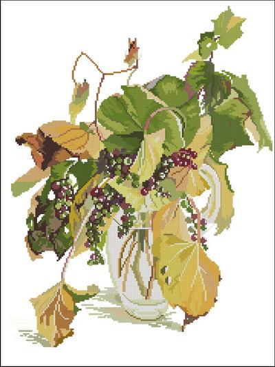 Цветы дикий виноград Fujic