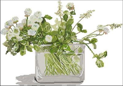 Цветы клевер Fujic