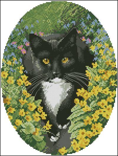 John Stubbs Cats
