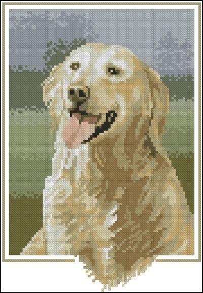 John Stubbs Dogs