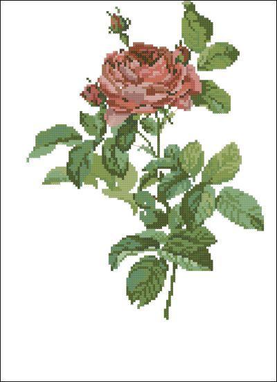 Lanarte Цветы Розы