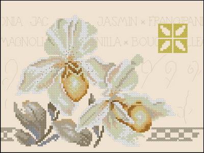 Lanarte Цветы Орхидея