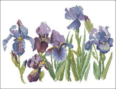 Lanarte Цветы Ирисы